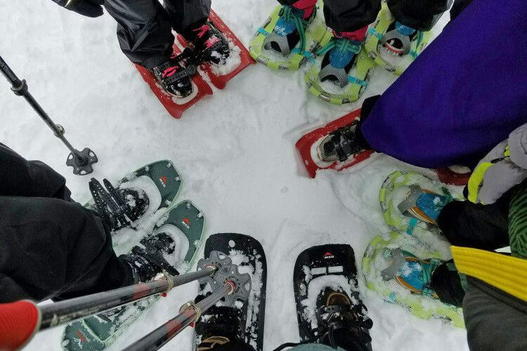 Different kinds of snowshoes