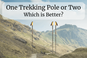 One Trekking Pole or Two